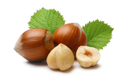 Hazelnut Protein Rapid Test