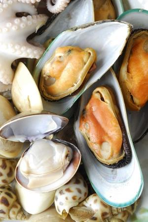 Mollusk Protein ELISA Kit