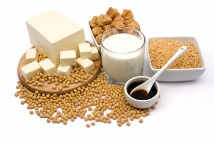Soy Protein ELISA Kit