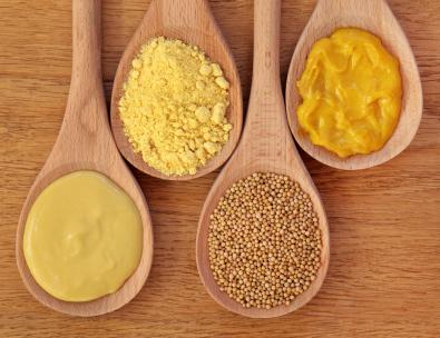 Mustard Protein ELISA Kit