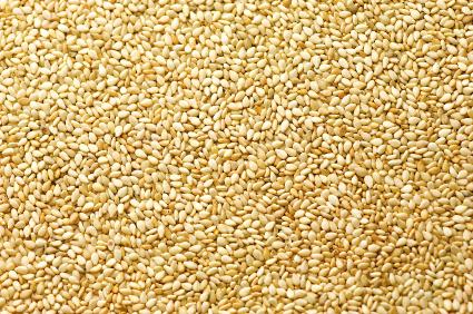 Sesame Protein ELISA Kit